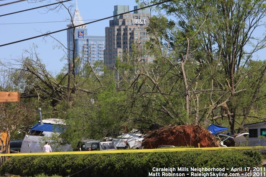Uprooted tree damage with Raleigh Skyline