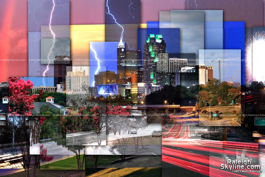 Raleigh Skyline Seasons - Version 2