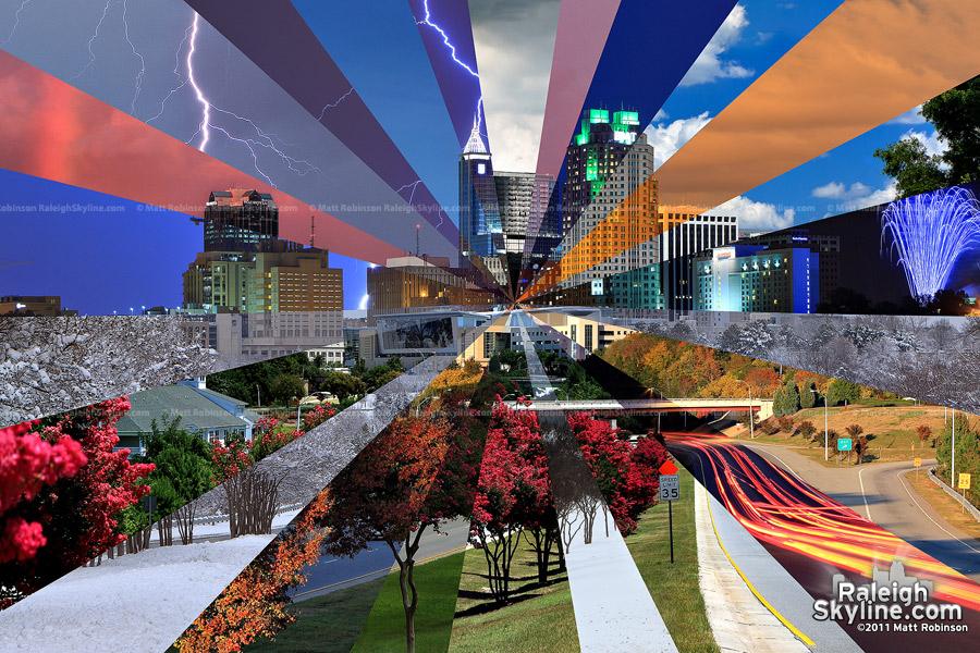 Downtown Raleigh Skyline Seasons - Version 1