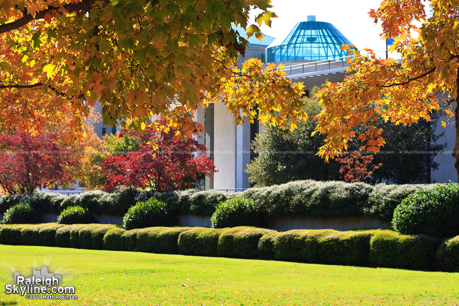Fall colors near the legislative building