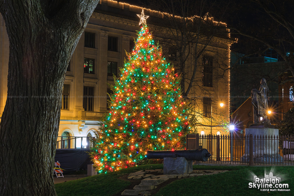 Raleigh Capitol Christmas Tree