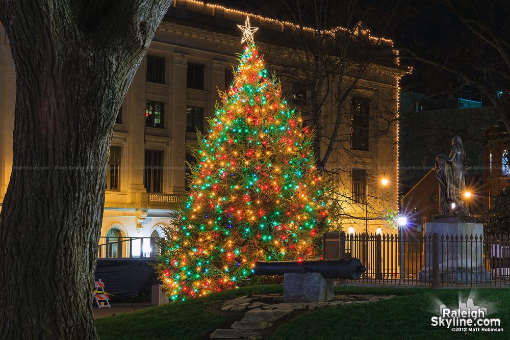 Raleigh Capitol Christmas Tree