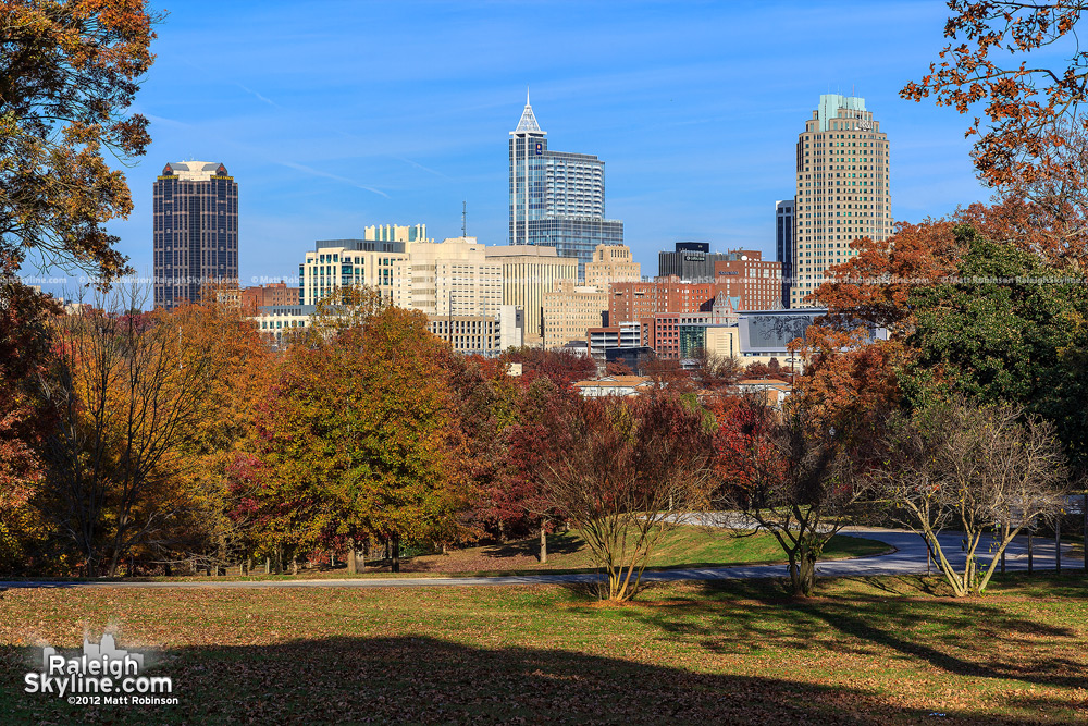 Fall colors and Raleigh Skyline from Dorothea Dix Campus