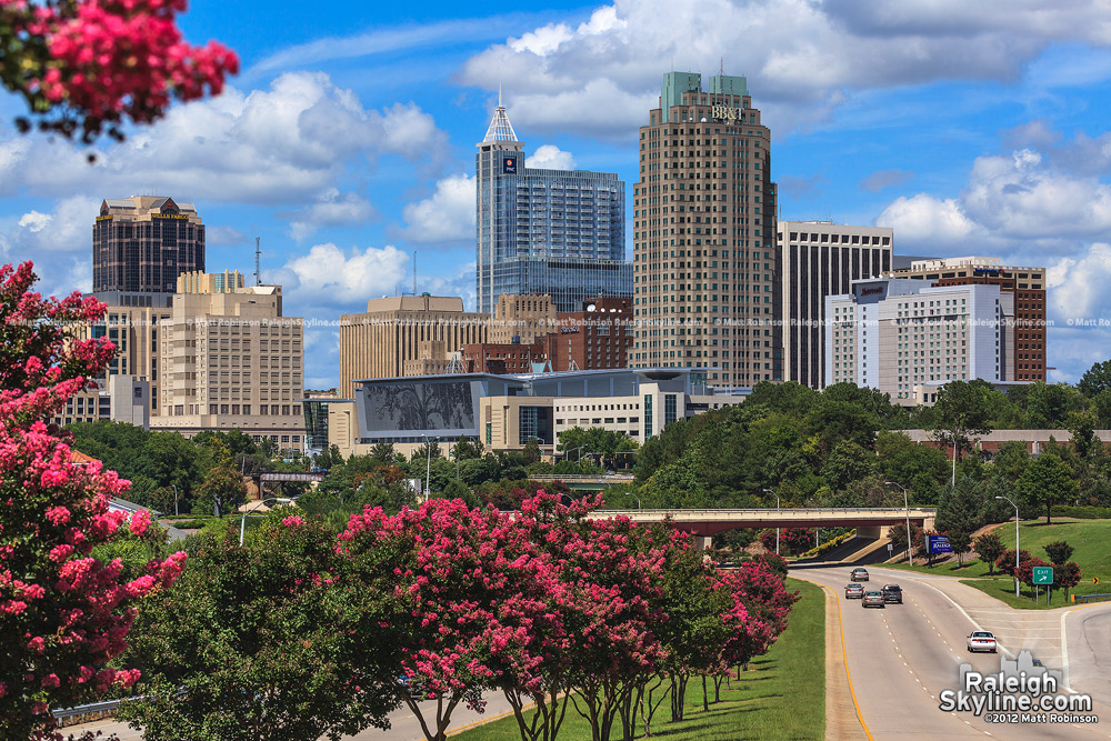 Raleigh skyline with blooming crepe myrtle trees