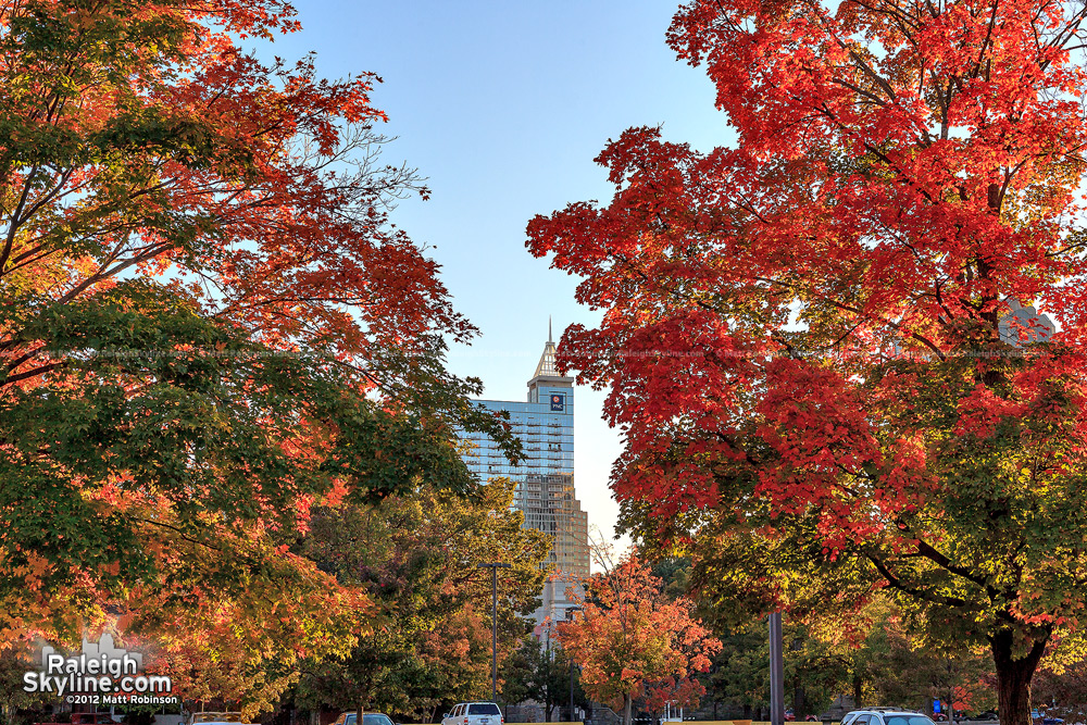 PNC Plaza and autumn trees