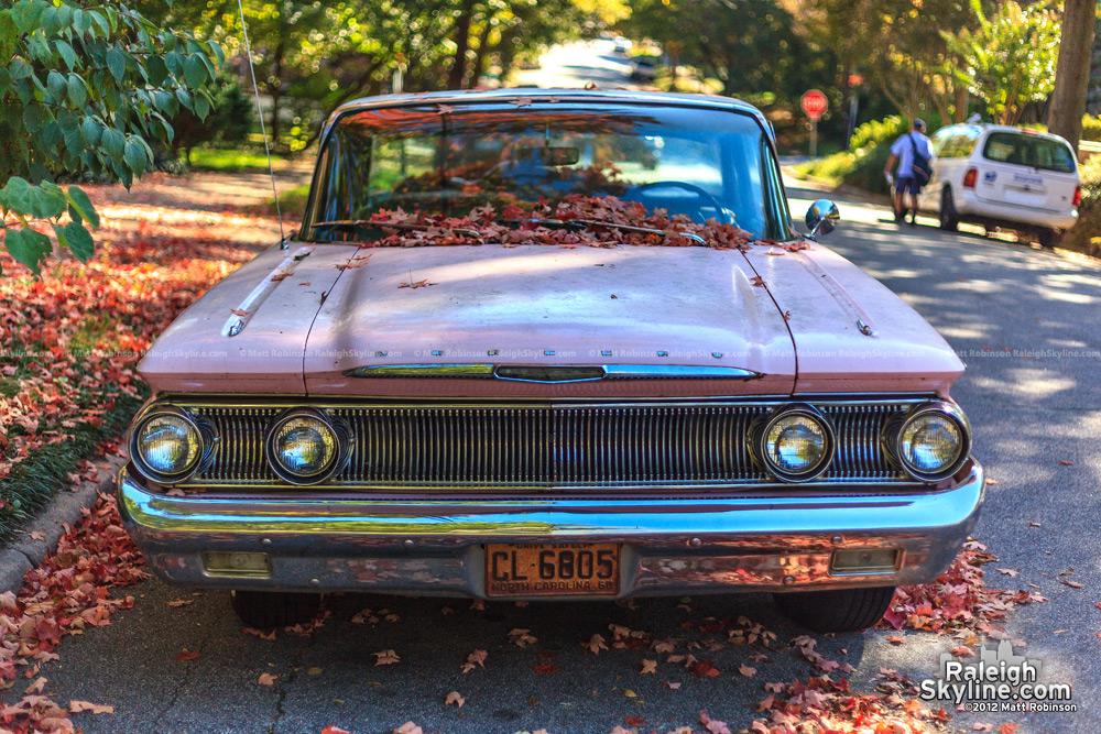 Oakwood Mercury with settled fall leaves