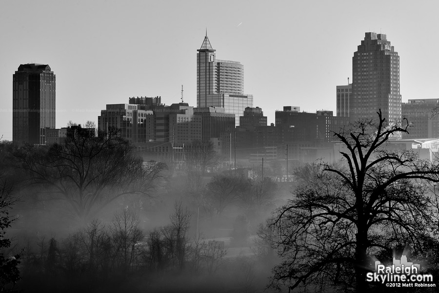 Black and White Raleigh in the fog