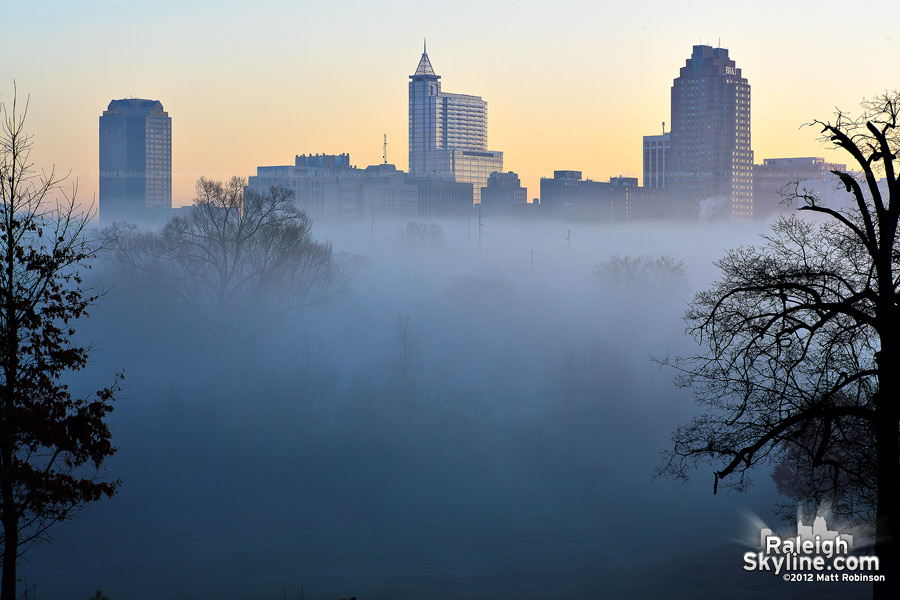 Downtown Raleigh in morning fog from Dorothea Dix