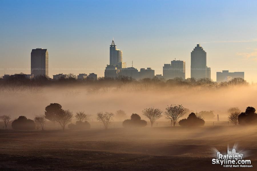 Morning fog with Raleigh Skyline