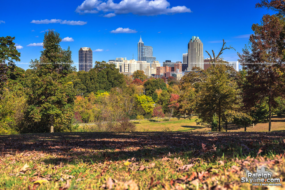 Fall scene from Dorothea Dix with Raleigh skyline