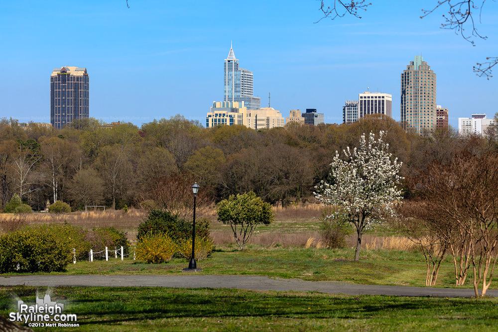 Spring skyline 2013