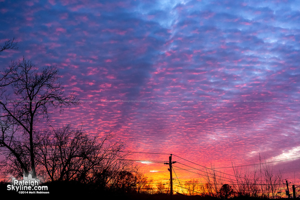 Caraleigh Sunset - January 23, 2014