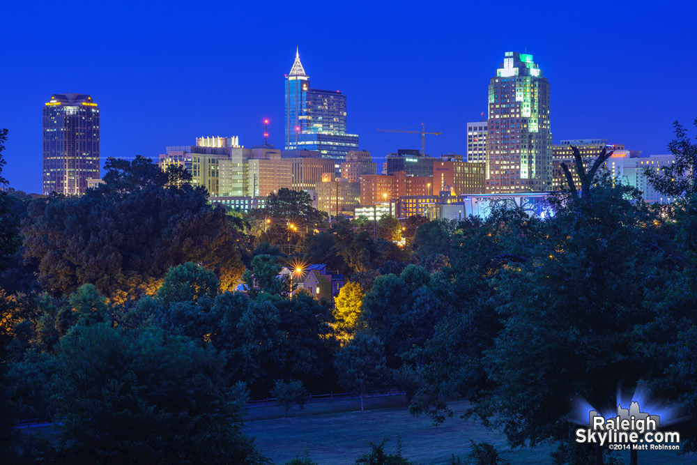Dorothea Dix Skyline at night