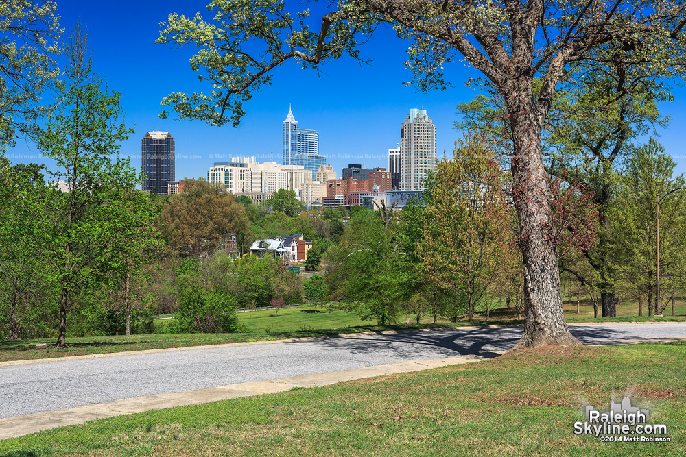 Raleigh Skyline from Dix Hill in the spring