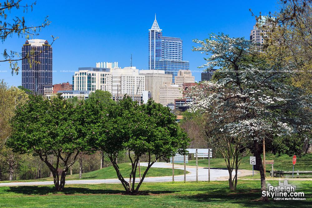 Spring Raleigh Skyline