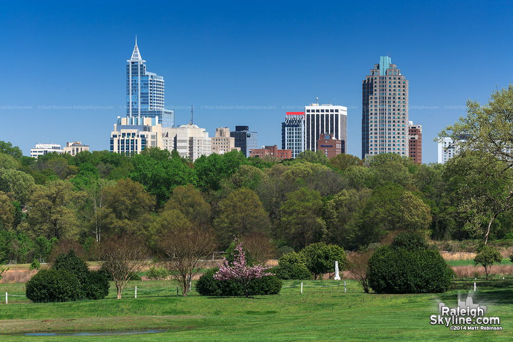 Sunny day in Downtown Raleigh