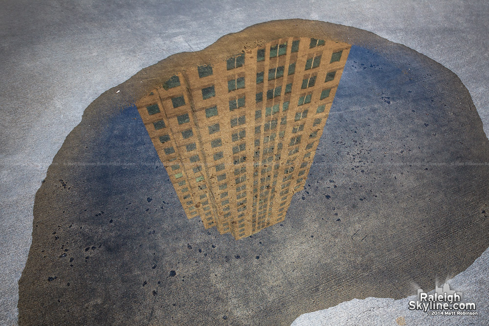 Tears of former employees formed this poignant reflecting puddle