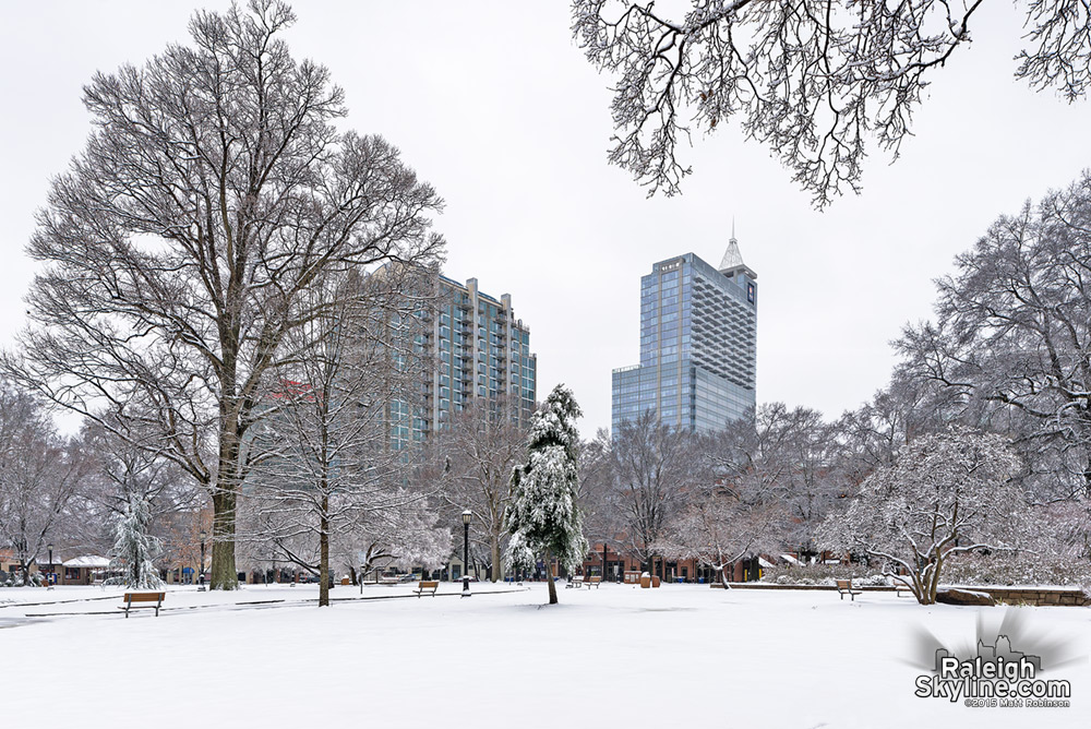 Winter Scene in Downtown Raleigh