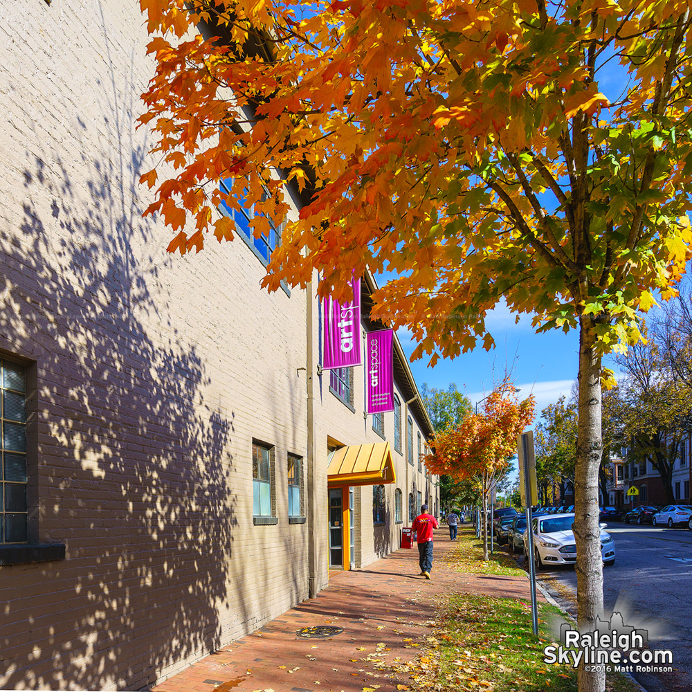 Artspace and autumn leaves