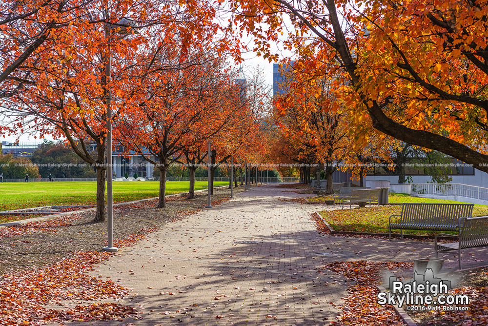 Halifax Mall in the fall