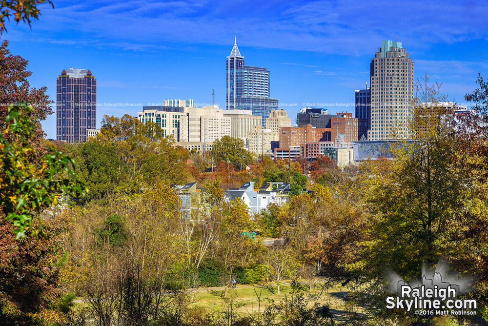 Raleigh Skyline with Fall Colors