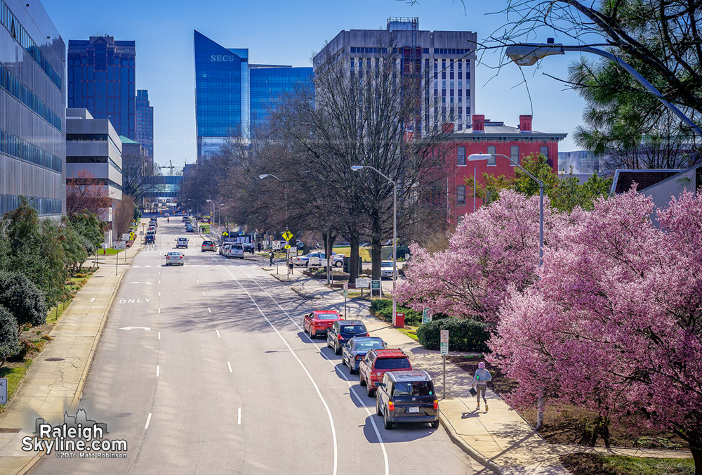 Spring 2016 Raleigh