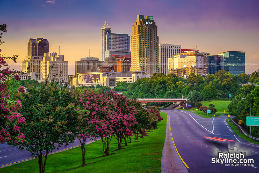 Setting sun with Crape Myrtle trees and the Raleigh Skyline