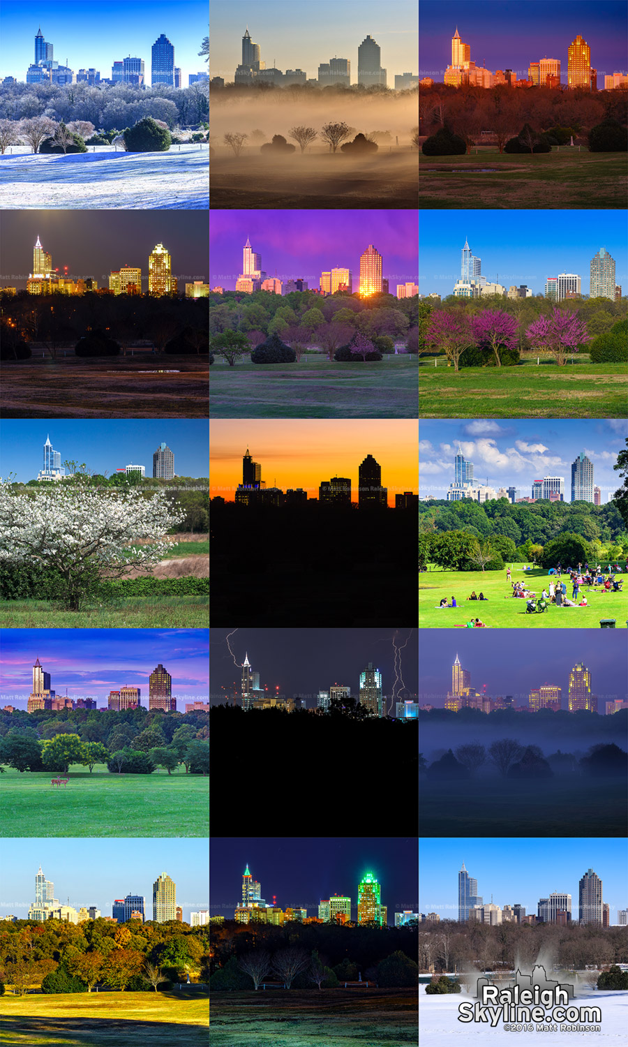 Moods of Raleigh - Raleigh Skyline landscapes from Dorothea Dix Park