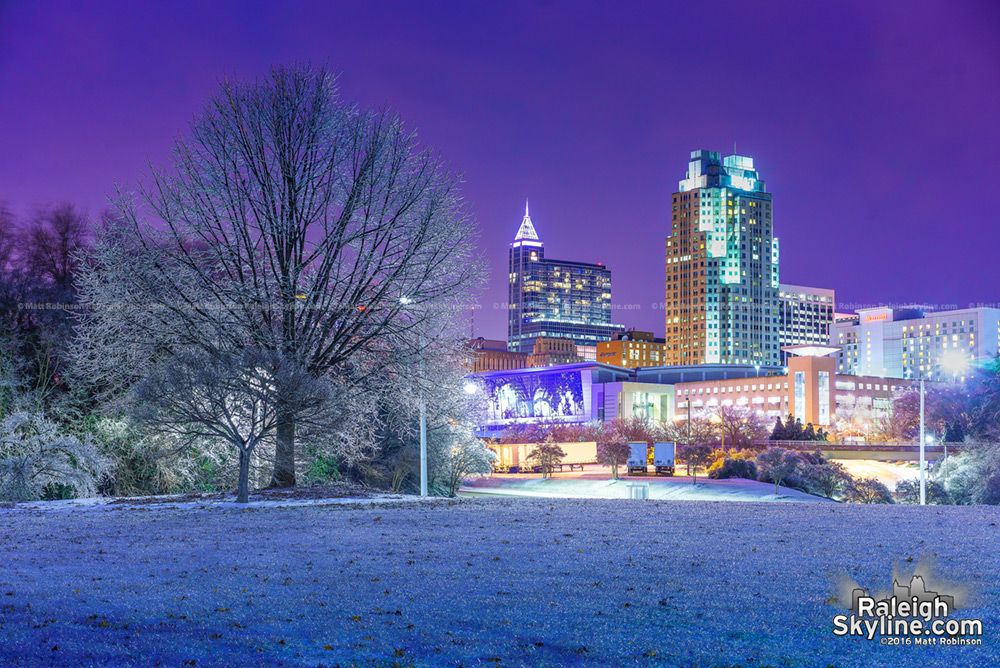 Downtown Raleigh at night with glassy tree covered in ice