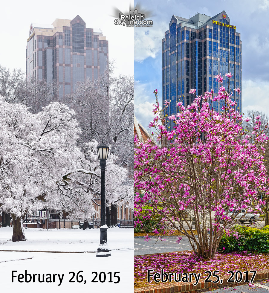 Tale of two Februarys in Raleigh