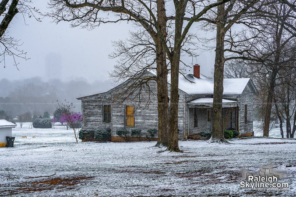 Flower cottage at Dorothea Dix in the early spring snow