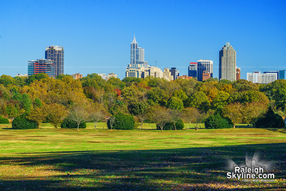 Raleigh skyline from Dix Park