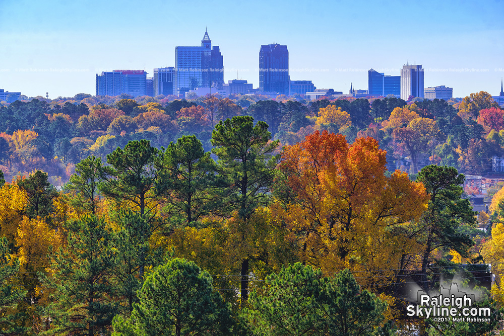 Fall colors and downtown Raleigh from Wake Forest Road