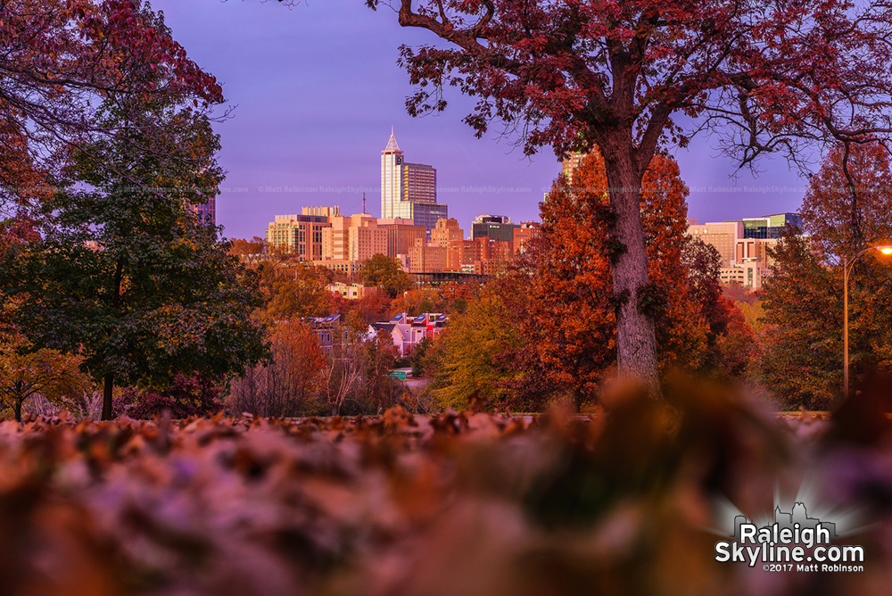 Color sunset with autumn leaves and Raleigh skyline