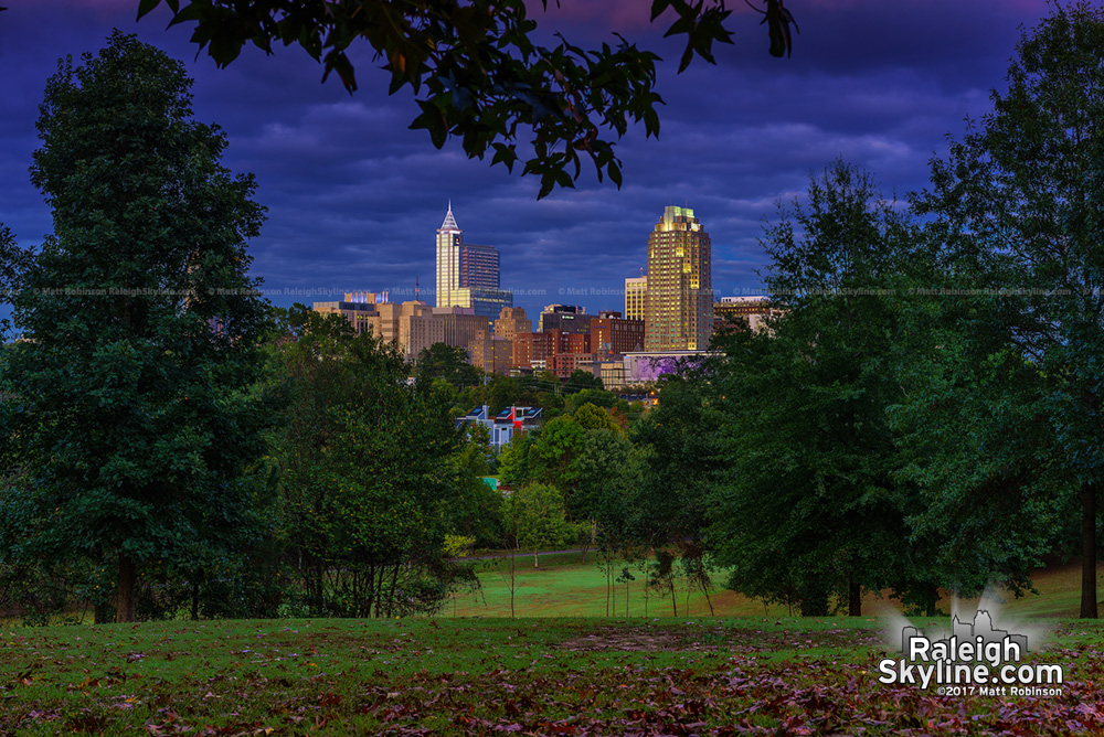Early fall leaves at dusk with downtown Raleigh