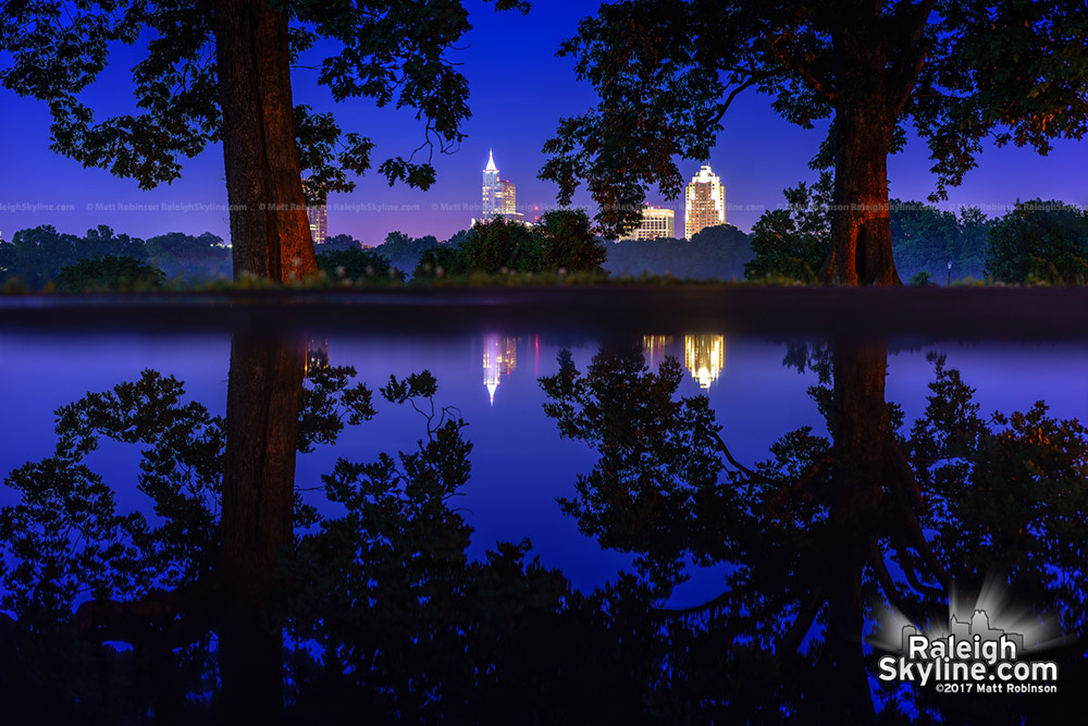 Downtown Raleigh and trees reflect in a another rain puddle at Dorothea Dix Park