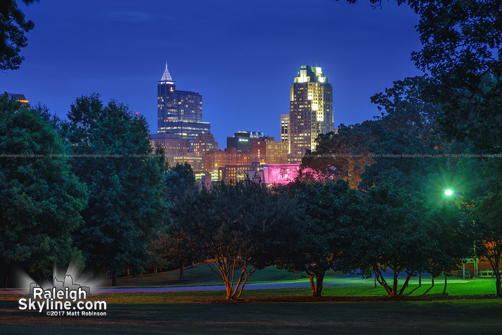 Skyline at night from Dix Park
