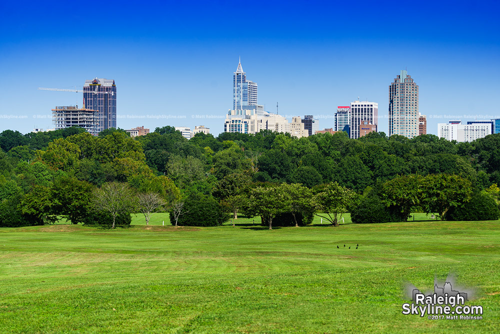 Sunny skyline from Dix Park