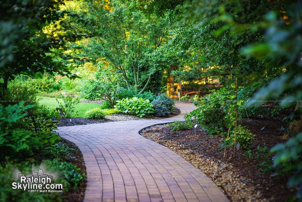 Path at JC Raulston Arboretum