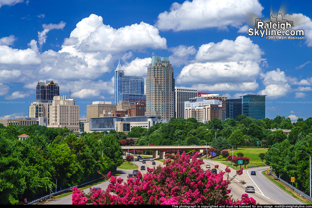 Cumulus clouds over the Raleigh skyline with blooming Crepe Myrtles -Summer 2017