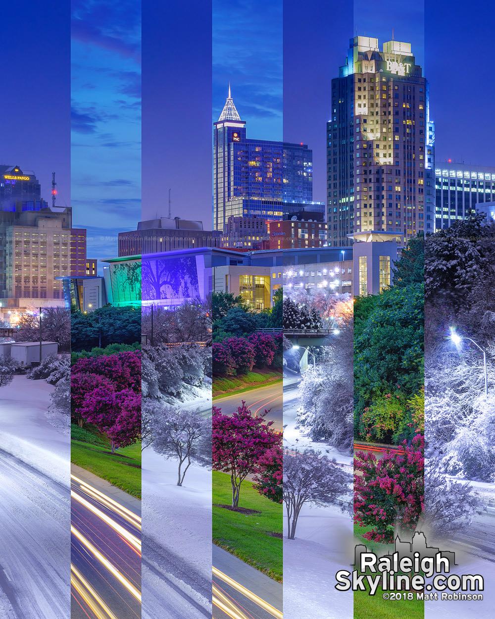 Raleigh Summer Winter 2018 Comparison
