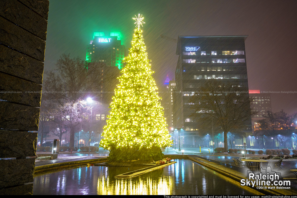 City of Raleigh Christmas Tree in the Snow