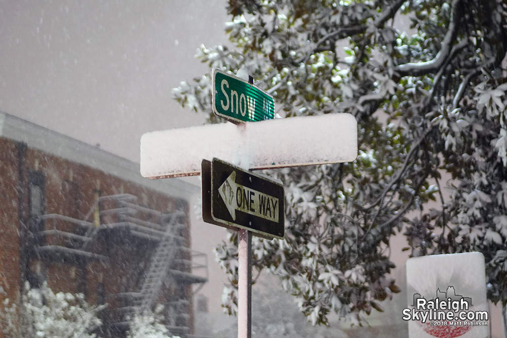 Snow Avenue in Raleigh with snowfall