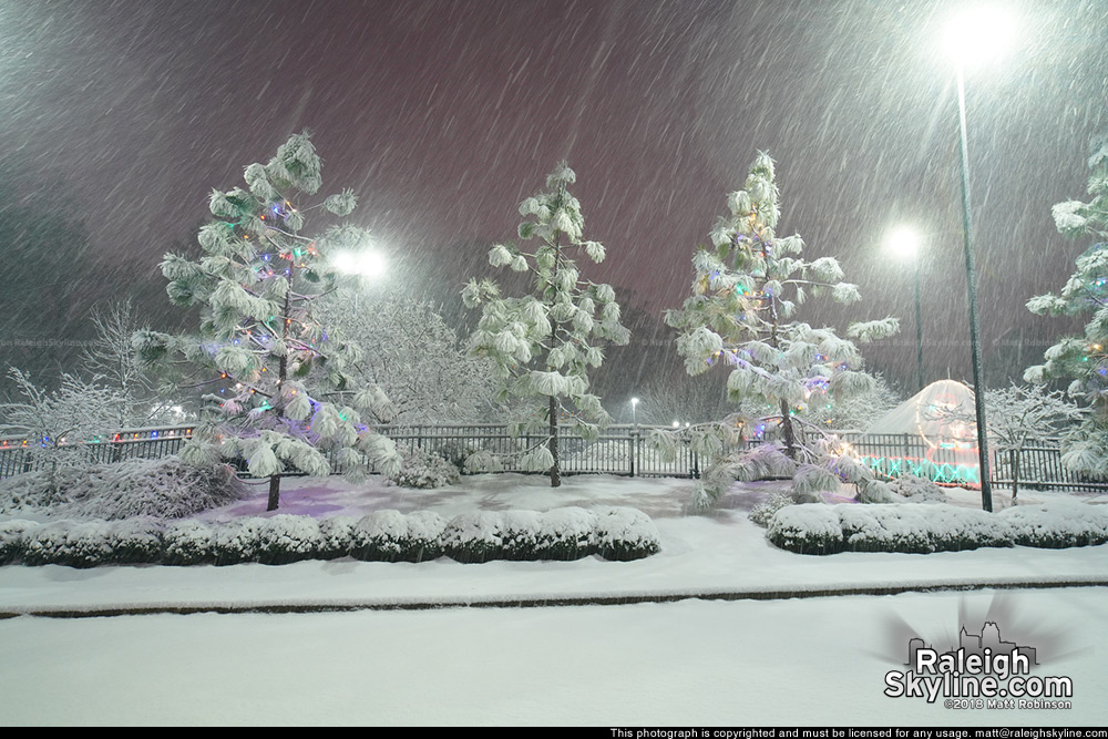 Pullen Park in the snow at night
