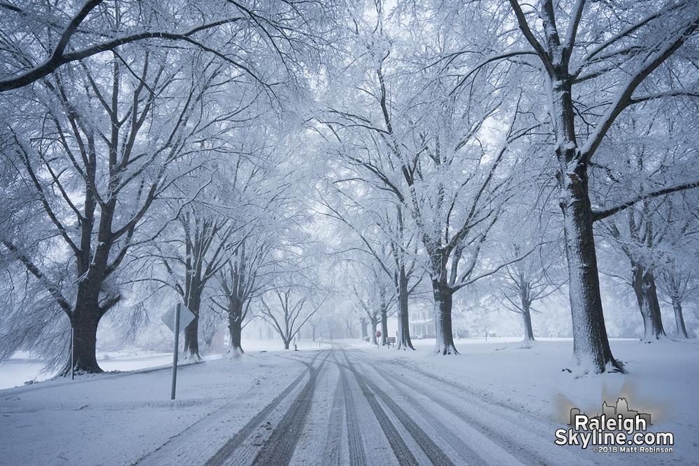 Snowy Oaks at Dix