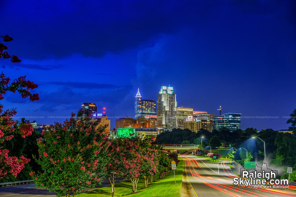 Crepe Myrtles in early bloom with downtown Raleigh skyline at night