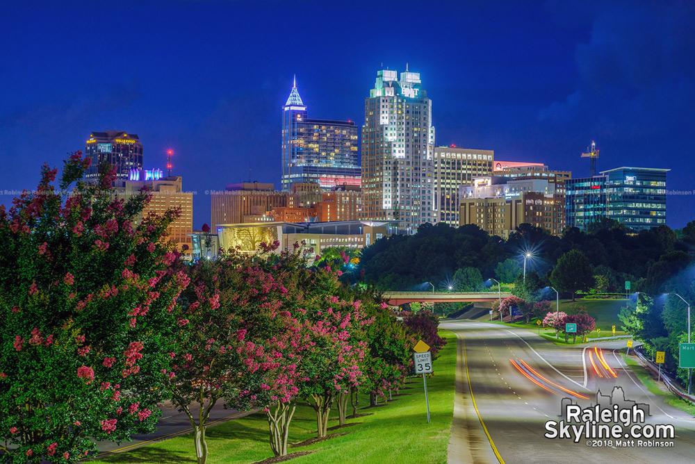 Raleigh skyline 2018
