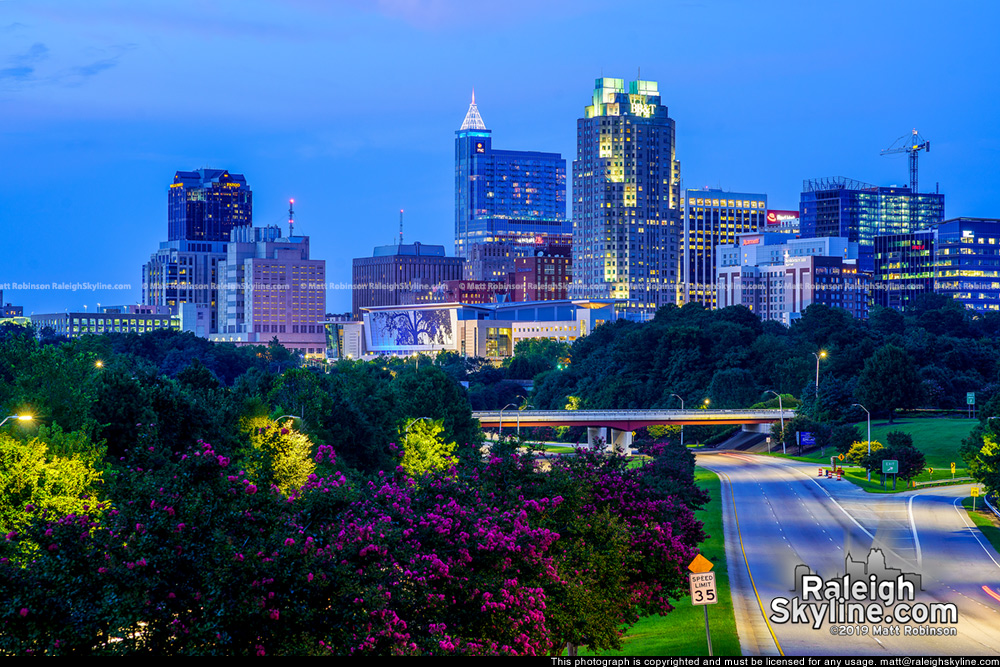 High above the Crepe Myrtles at night with Raleigh
