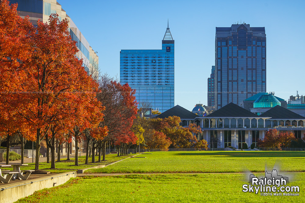 Raleigh Autumn 2019