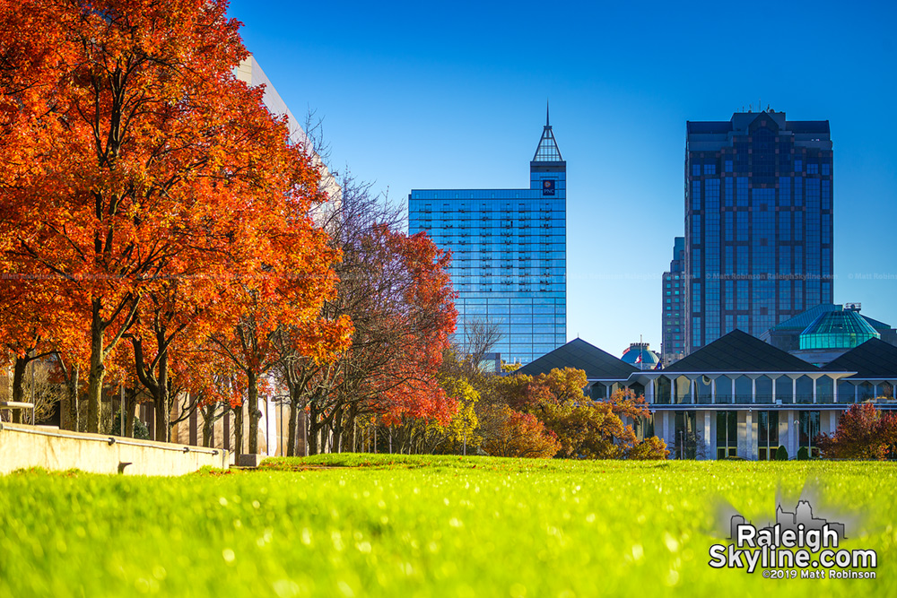 Bright fall colors along Halifax Mall with downtown Raleigh